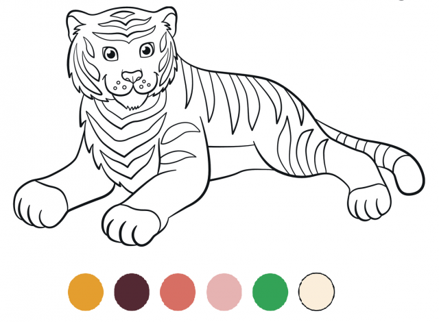 Coloriage Tigre Et Lion Media Actif