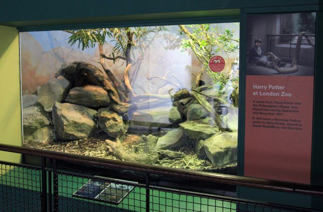 Vivarium London Zoo Harry Potter