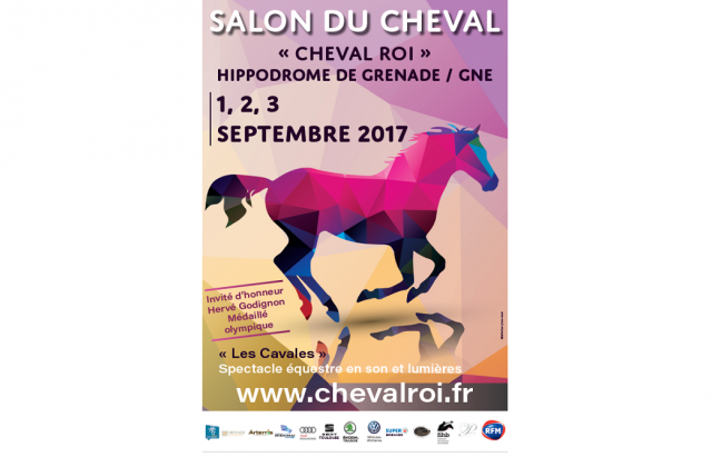 salon cheval toulouse famille